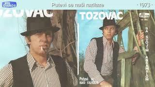 Predrag Zivkovic Tozovac - Putevi se nasi razilaze - (Audio 1973)