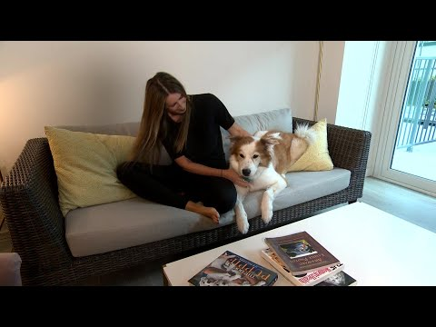 Study: Millennials Care More For Pet's Health Than Their Own thumbnail