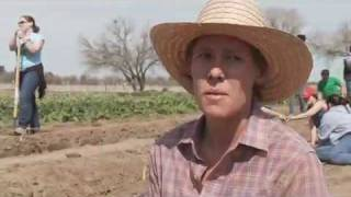 Marana Farm (Community Food Bank, Tucson)  -