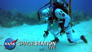 Space Station Live: From Underwater, The NEEMO Commander