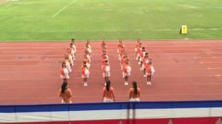YLLSS  2015-2016 學社啦啦隊