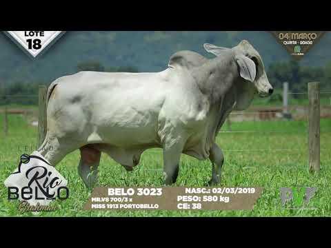 LOTE 18   BELO 3023