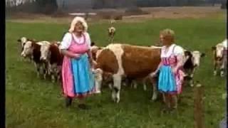 Скачать Geburtstagsjodler