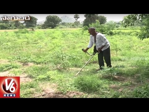 Success Story Of Organic Farmer Jitta Bal Reddy | Yadadri Bhuvanagiri | Sagubadi | V6 News