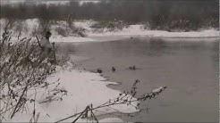 Лов на патици по река Янтра