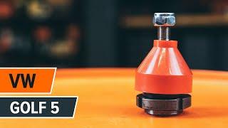 Kaip ir kada reikia keisti Šarnyras VW GOLF V (1K1): videopamokos