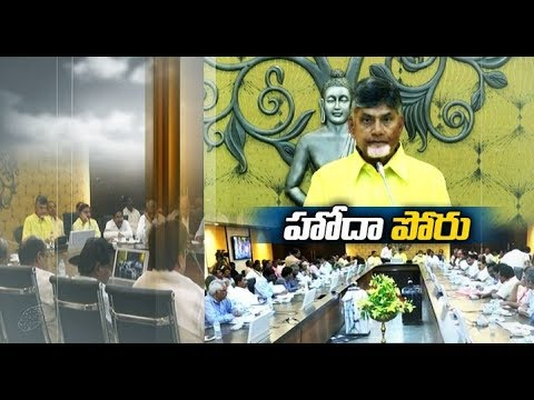 Chandrababu to Stage Protest Against the Centre | in Delhi on February 11