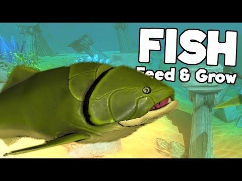 FEED & GROW FISH #19 : Les plus gros poissons thumbnail