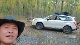 free camping at deląware state forest.