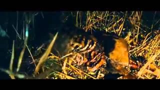 Proie (La Traque) (Prey) (Antoine Blossier, Francia, 2010) - Trailer