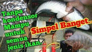 tess alat strum ikan paling dahsyat sedunia part 2 di tes langsung dgn ikanya