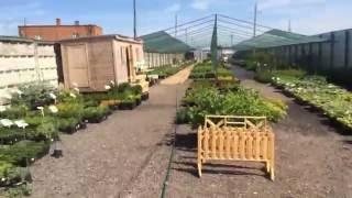 садовый центр интернет магазина http://plantmania.ru/