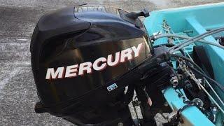 2009 Mercury 20 HP 4-stroke carburetor removal.