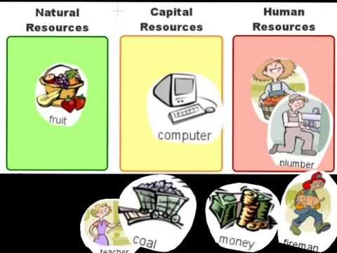 how to develop human capital