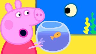 Peppa Pig Full Episodes | Peppa Pig Aquarium Special