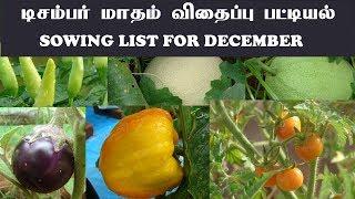 டிசம்பர் மாதம் காய்கறி செடிகள் பட்டியல் - December month vegetable list