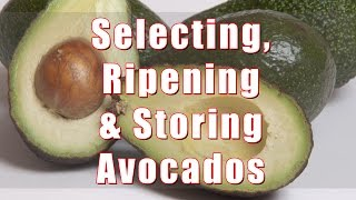 How To Select, Ripen and Store Avocados