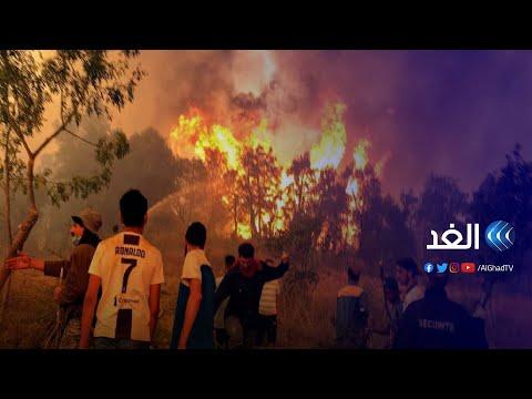 """حرائق الجزائر.. من هي """"الأيادي الإجرامية"""" التي تقف وراء إشعال النيران في الغابات؟"""