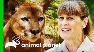 Terri Irwin Visits A Wildlife Sanctuary Very Close To Her Heart | Crikey! It's The Irwins