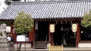 無形文化財、上神谷(にわだに)のこおどりに付きましては、 tamachan19...