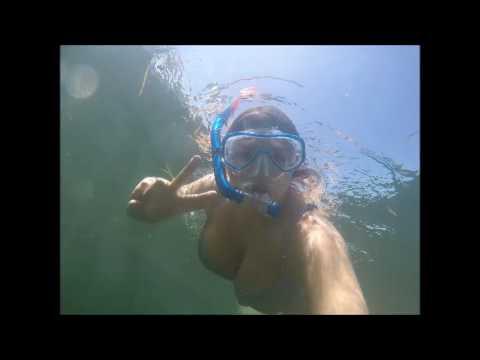 Scalloping In Florida | Vlog 2017