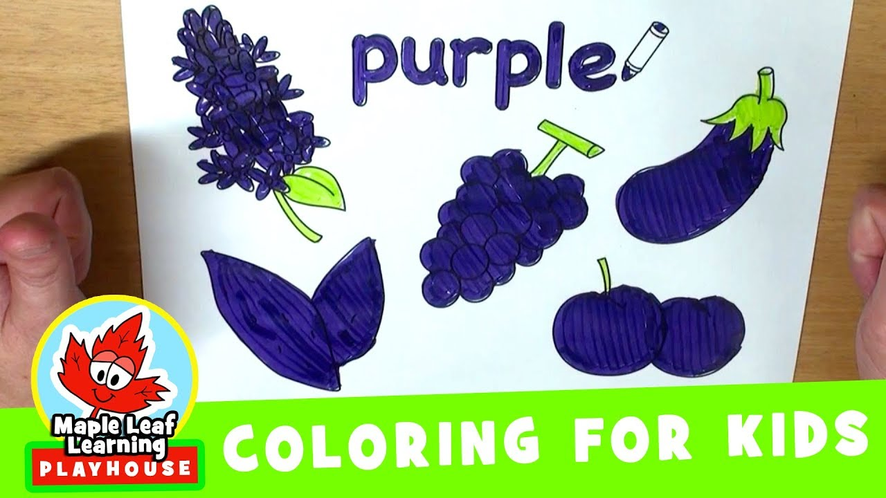 purple coloring page for kids maple leaf learning playhouse
