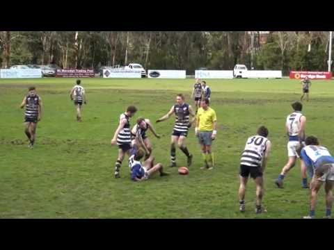 Round 14 Highlights