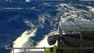 Crossing the Atlantic in an Orana 44 Catamaran