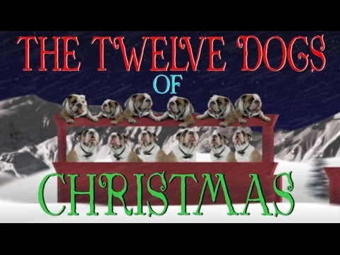 12 Days Of Christmas Dog Version