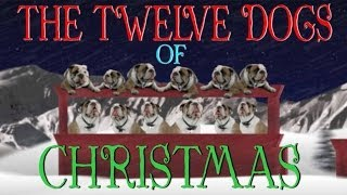 12 Days Of Christmas (Dog Version)