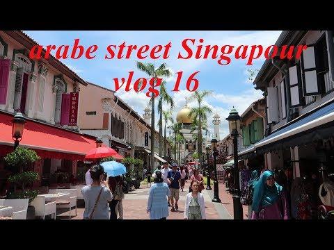 visite de mustafa center et arabe street Singapour vlog fr