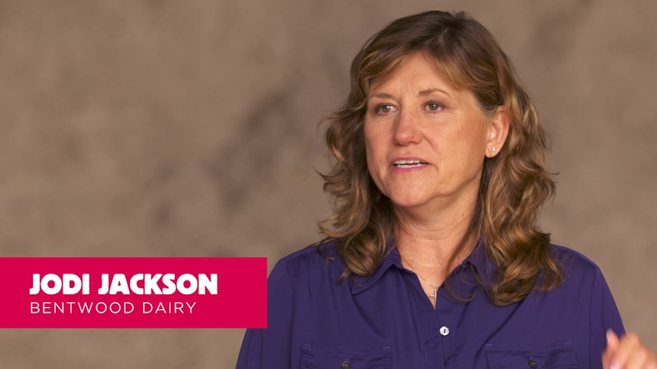 Meet the Jackson Family, Bentwood Dairy - YouTube