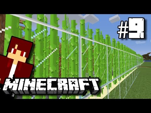 Farm Sugar Cane Terbaik! - Minecraft Survival Indonesia #9