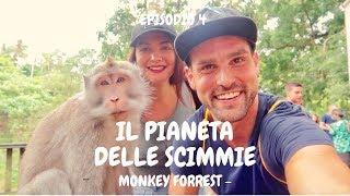 Episodio 4  ~ Il Pianeta delle Scimmie - Monkey Forrest ad Ubud