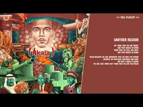 Akala - Another Reason - ( lyric video )
