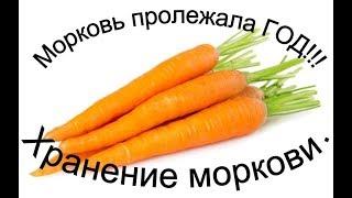 СУПЕР Лучший способ хранение моркови год и более Реальный пример и свеклы не по теме канала