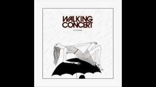 Walking Concert - The Animals Lyrics