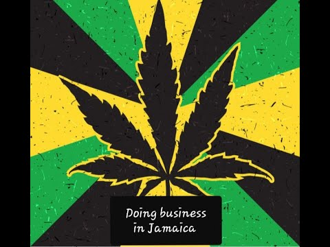 """""""Doing business in Jamaica"""" Global Business with your host Dr. Neva and guest, Patrick Maitland"""