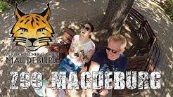 Zoo Magdeburg 2019 - Groß, modern, besonders!