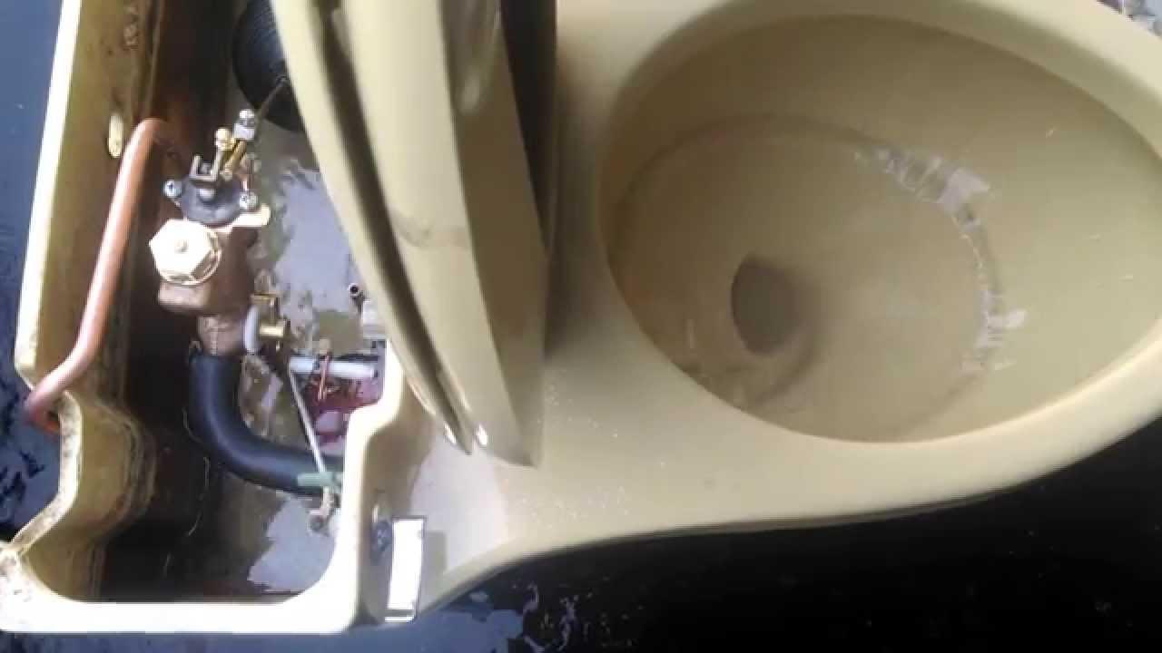 Kohler Champlain Toilet Seat Svwilp Nl