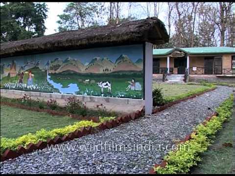 Jim Corbett museum set amid lush lawns in Kaladhungi, Uttarakhand
