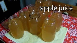 Gambar cover Apple Juice