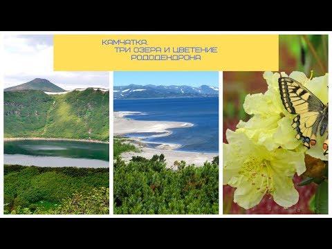 КАМЧАТКА. три уникальных озера + цветение рододендрона