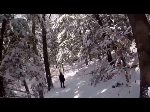 Snowshoeing in New Hampshire