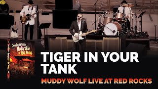Joe Bonamassa - Tiger In Your Tank - Muddy Wolf at Red Rocks