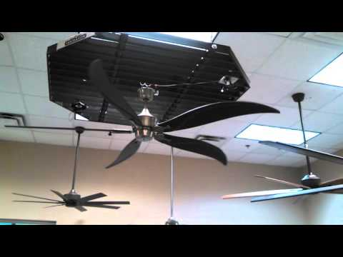 Fanimation Big Island DC Ceiling Fan in the Fanimation