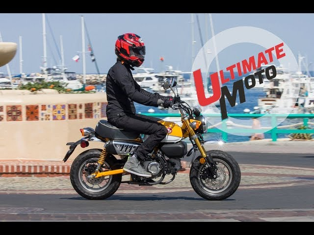 2019 Honda Monkey First Ride Review | Ultimate Motorcycling