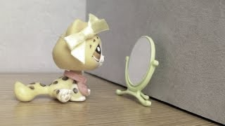 LPS: Face In The Mirror