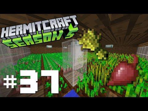 Hermitcraft Season V: E37 - Wheat to the Beet