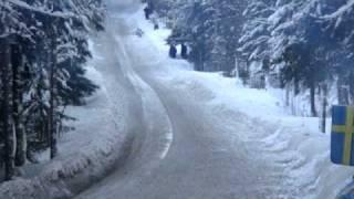 WRC Rally Sweden 2011 -  SS Likenäs.   AEL Sweden Fans